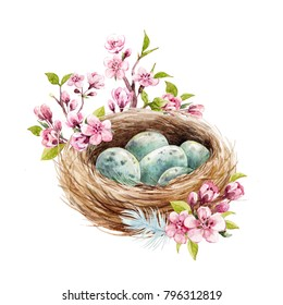 Easter spring watercolor illustration of bird's nest nest with blue eggs, branches  cherry blossoms, feathers . invitation card