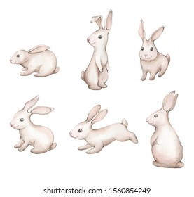 Easter white bunny. Watercolor illustration hand drowing