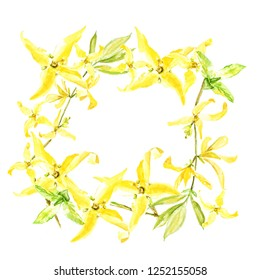 Easter wreath with yellow forsythia. Square border. Watercolor illustration on white background.