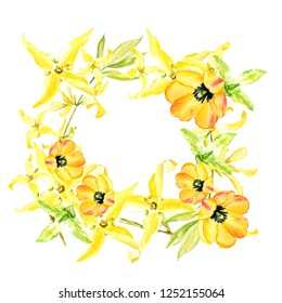 Easter wreath with yellow forsythia and yellow tulips. Square border. Watercolor illustration on white background.