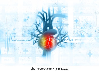ECG background with human heart
