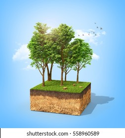 Eco concept. Cross section of ground with tall trees on a blue. 3d illustration