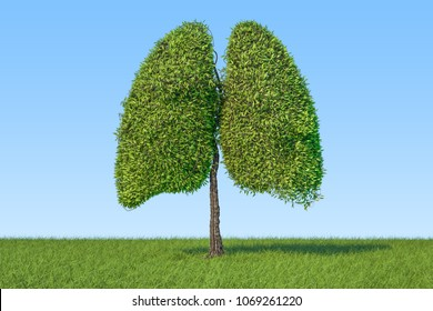 Eco concept. Tree in the shape of lungs on the green grass against blue sky, 3D rendering