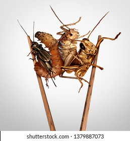 Edible insects and eat bugs or eating insect snacks as exotic cuisine as a cricket grasshopper and larvae with chopsticks as a symbol for entomophagy with 3D illustration elements.