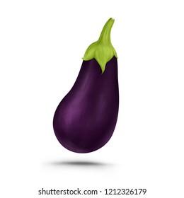 Eggplant brinjal realistic illustration, isolated on white background.