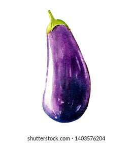 eggplant watercolor illustration on white background