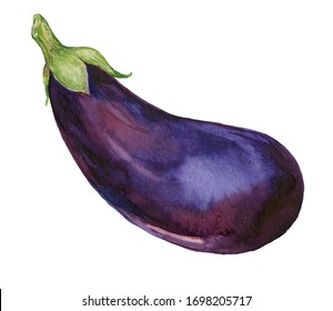 eggplant watercolor on an isolated white background