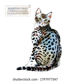 Egyptian Mau cat. home pet. breed of Cats series. cute kitten. watercolor domestic animal illustration. pedigreed cats