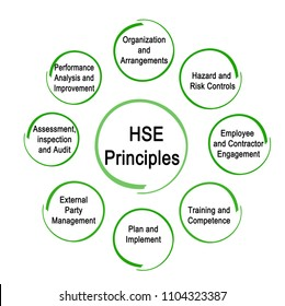 Eight HSE Principles