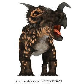 Einiosaurus Dinosaur on White 3D illustration - Einiosaurus was a Ceratopsian herbivore dinosaur that lived during the Cretaceous Period in North America.