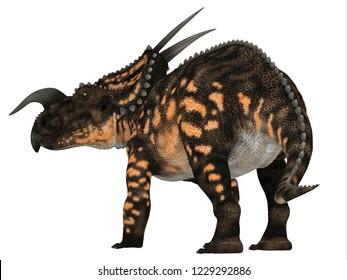 Einiosaurus Dinosaur Tail 3D illustration - Einiosaurus was a Ceratopsian herbivore dinosaur that lived during the Cretaceous Period in North America.