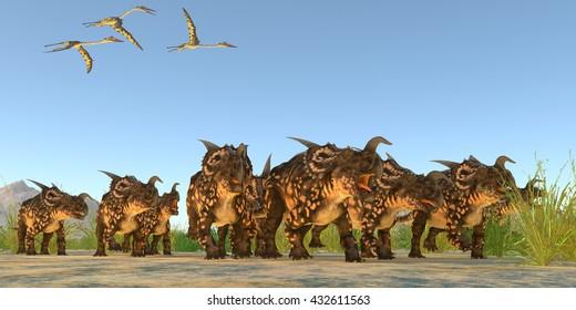 Einiosaurus Dinosaurs 3D Illustration - Quetzalcoatlus reptiles fly over a herd of Einiosaurus dinosaurs in the Cretaceous Period.