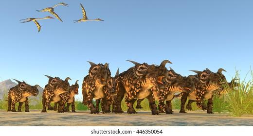 Einiosaurus Dinosaurs 3D Illustration - Quetzalcoatlus flying reptiles fly over a herd of Einiosaurus dinosaurs during the Cretaceous Period.