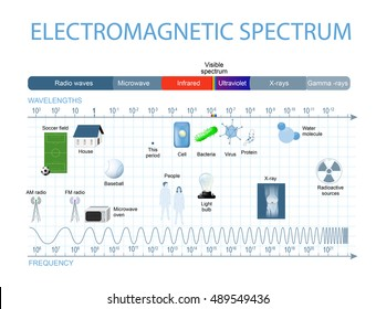 Electromagnetic Spectrum. The spectrum of waves includes infrared rays, visible light, ultraviolet rays, and X-rays.