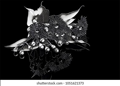 Elegant bouquet of Eucalyptus flowers, buds, and leafs - stylized illustration in black and white