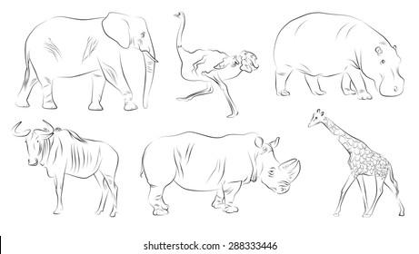 Elegant hand-draw of savannah animals: elephant, ostrich, hippopotamus, wildebeest, rhino, giraffe