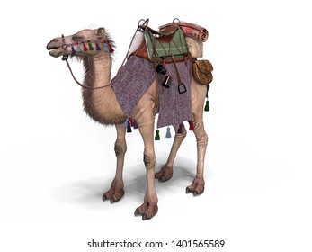 Elegant Saddled Camel 3D Illustration