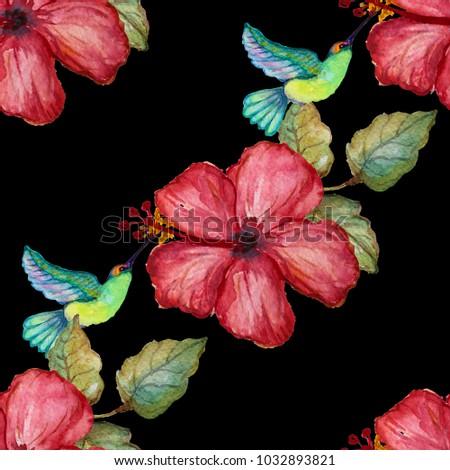 Elegant Seamless Pattern Watercolor Colibri Hibiscus Stock