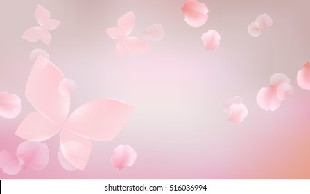 elegant soft pink color cherry flowers with butterfly, sakura background