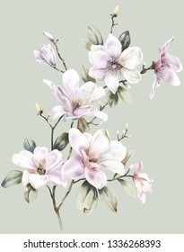 Elegant watercolor hand painted Magnolia