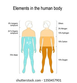 Elements of the Human Body. The main elements that compose the human body, by percent (oxygen, carbon, nitrogen and hydrogen).