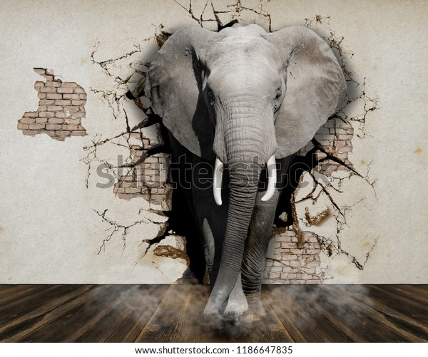 Elephant coming out of the walls 3d Wallpapers for walls.