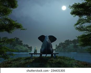 elephant and dog meditate at summer night