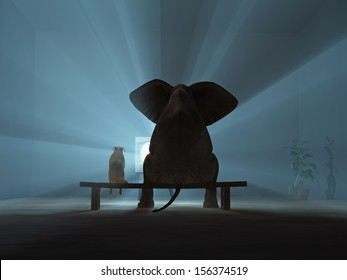 elephant and dog watching TV during quarantine