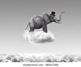 Elephant flying in the clouds, 3d rendering