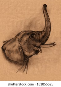 elephant head pencil drawing - realistic sketch in shades of brown