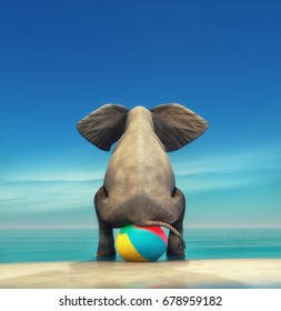 An elephant on a beach ball on the seashore. This is a 3d render illustration