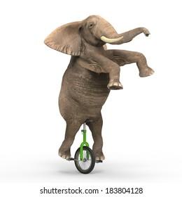 Elephant riding a unicycle