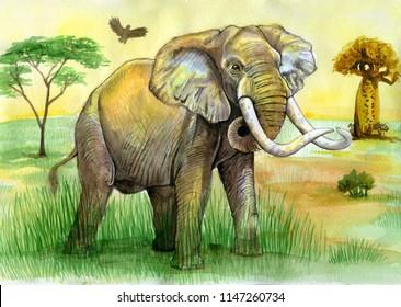elephant in savannah watercolor painting.