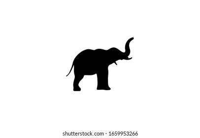 elephant silhouette icon flat design template