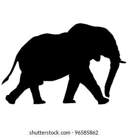 Elephant Silhouette Raster