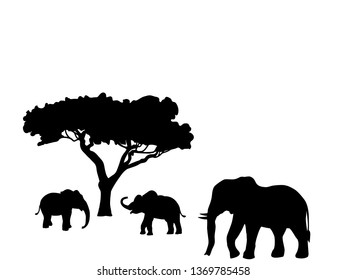 Elephant and two elephant calf mammal black silhouette animal. JPG illustration.