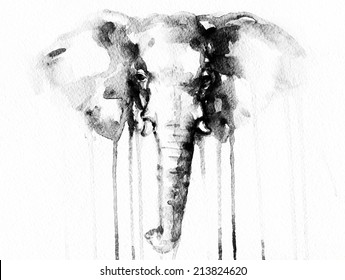 Elephant . watercolor illustration