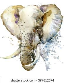 Elephant watercolor illustration with splash textured background.