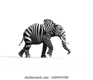 Elephant with zebra skin in the studio. The concept of being different. 3d render
