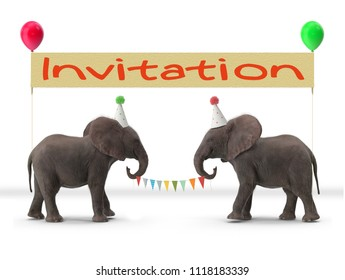 elephants with banner illustration