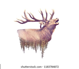 Elk and Forest. Watercolor Double Exposure effect on white background
