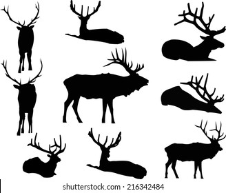 The Elk Silhouette includes nine, individual animal graphics.