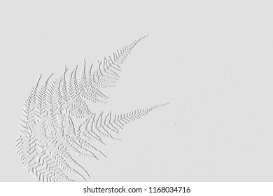 Embossed leaves with background grey