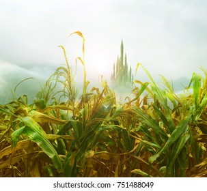 emerald city from cornfield