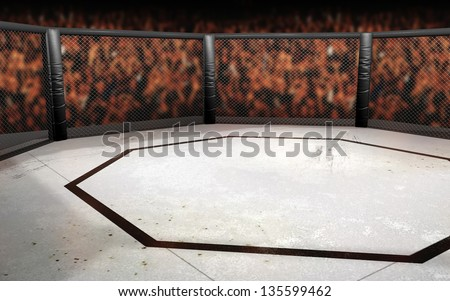 Empty Cage fighting octagon