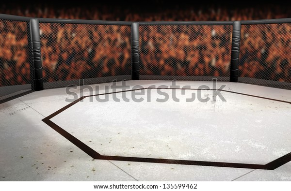 Empty Cage fighting octagon background with crowd.  Mixed Martial Arts Fighting Arena