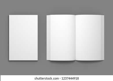 Empty composition of closed book with opened. White 3D illustration of blank book mock-up in top view.