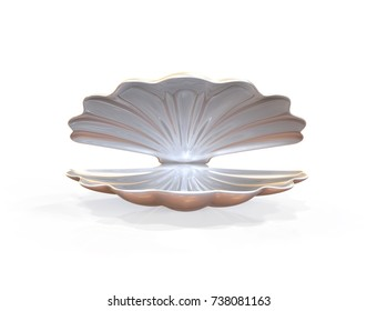 Empty opened seashell. 3d illustration isolated on white background