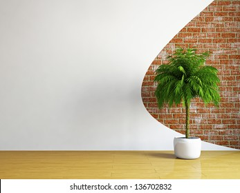 The empty room with plant near the wall