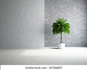 Der leere Raum mit Pflanze in der Nähe der Wand